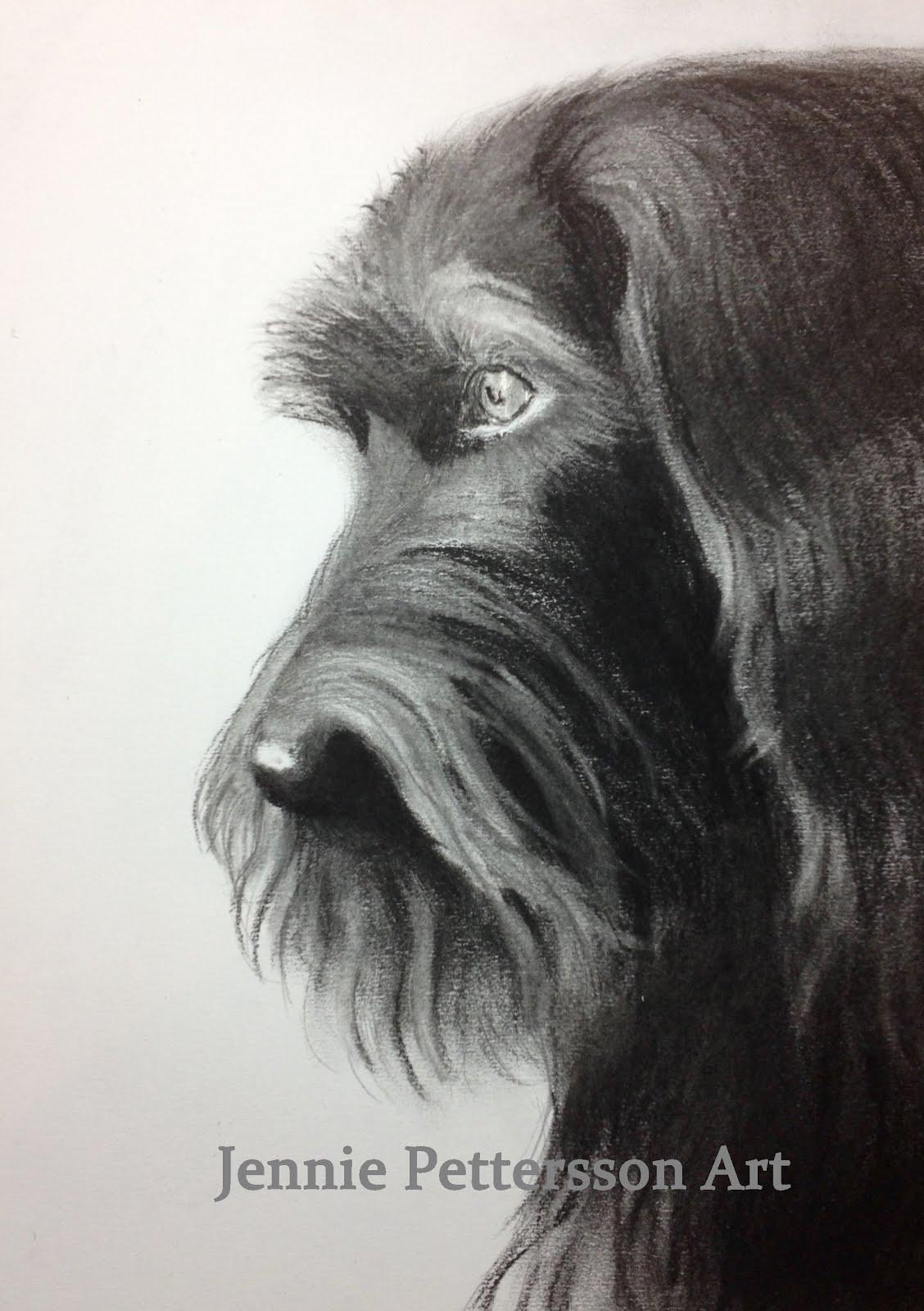 Porträtt i kol; Deena.