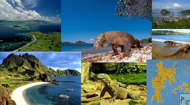 Sumba & Komodo Island Tour in 19 Days 18 Nights