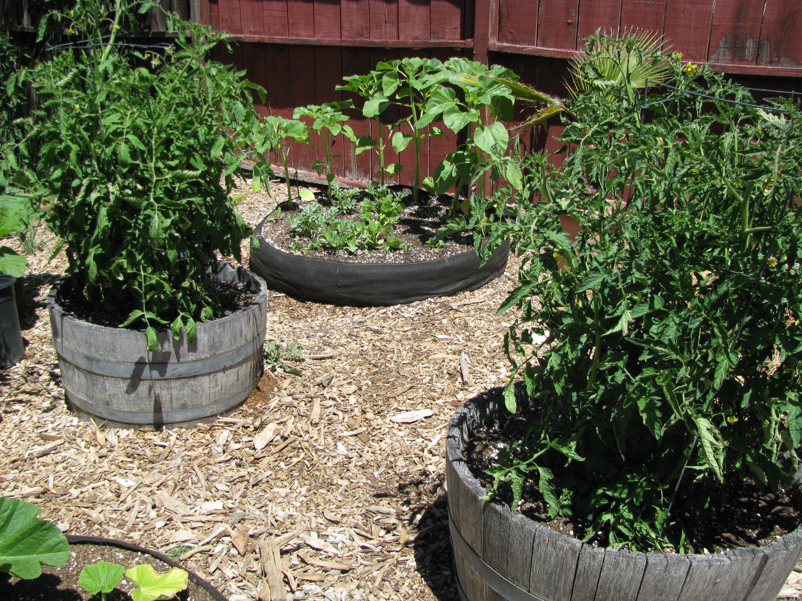 Landscape Fabric Garden Bed U2013 Izvipi.com