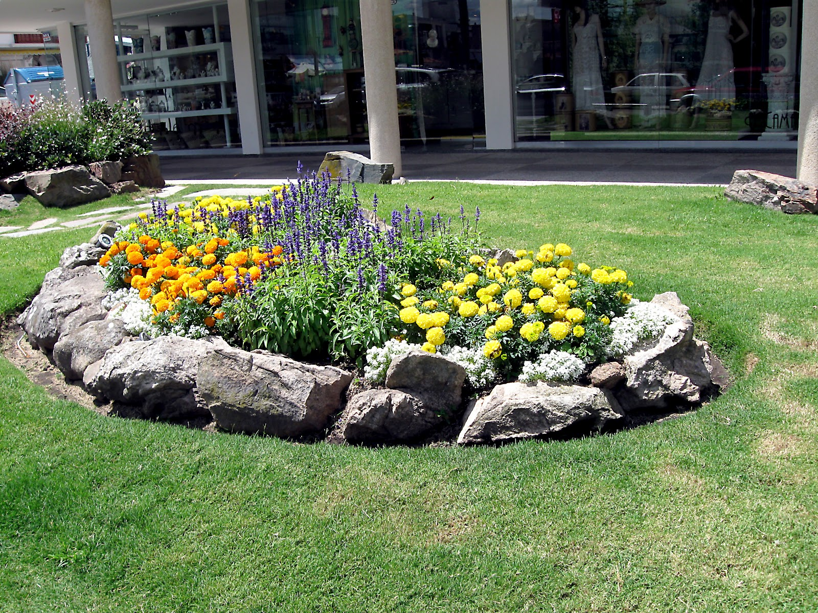 Quality answers tips for creating your own rock garden for Garden designs with rocks