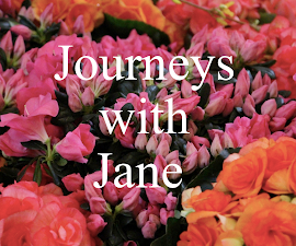 Jane's Personal Blog
