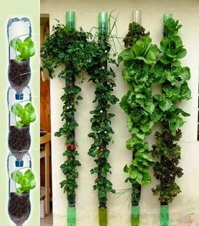 Temperos em vasos floreiras e garrafas pets jeito de for Como hacer jardines verticales para interiores