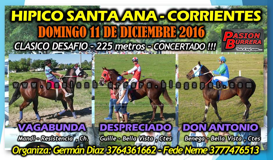 SANTA ANA - 11 - 225