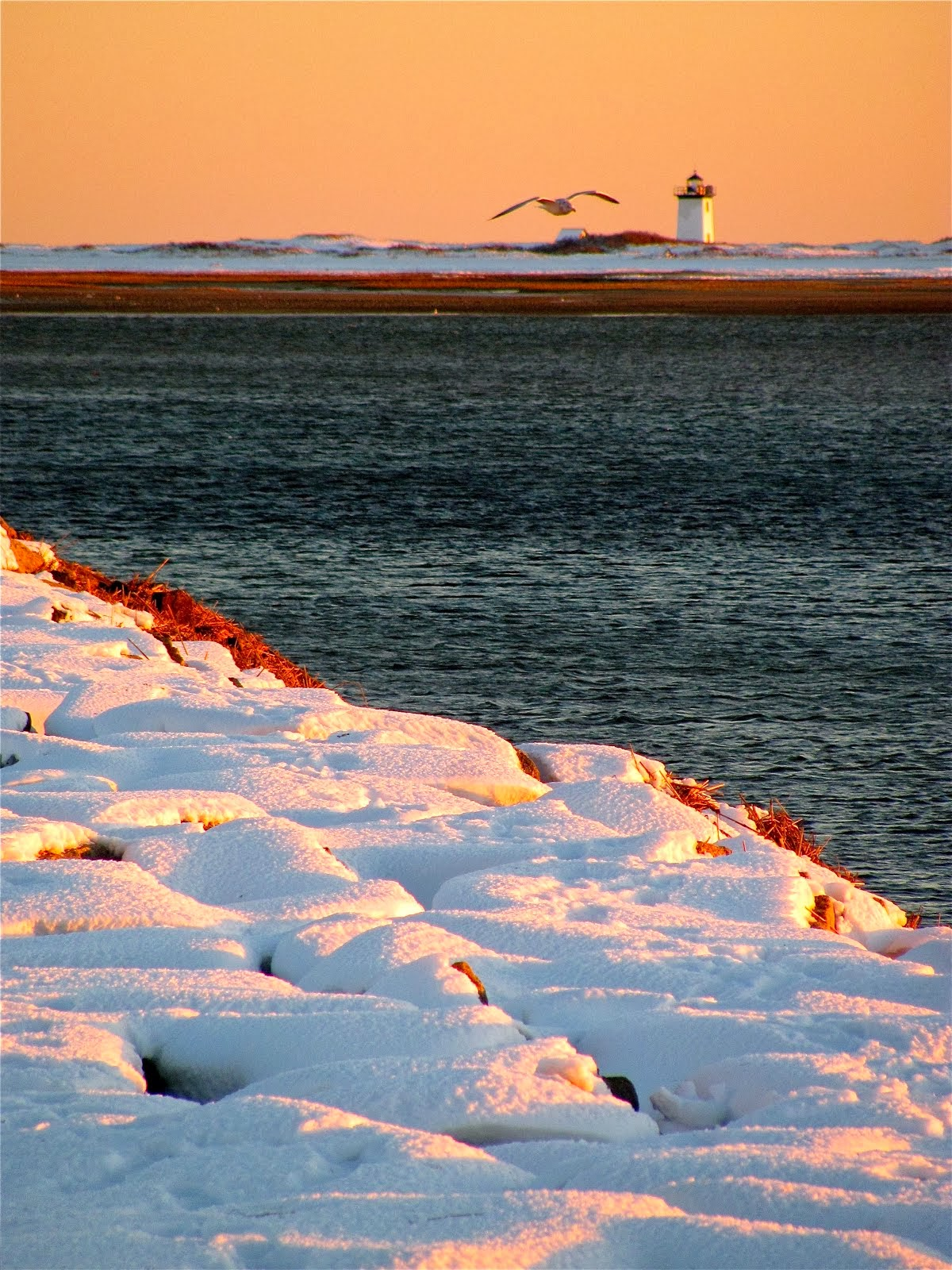 PTown Snow Brought Dramatic Photo Ops.