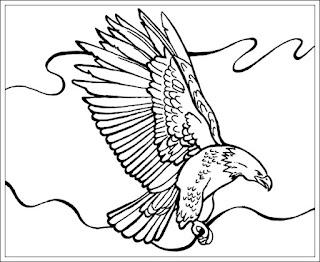 Ausmalbilder Adler Kostenlos