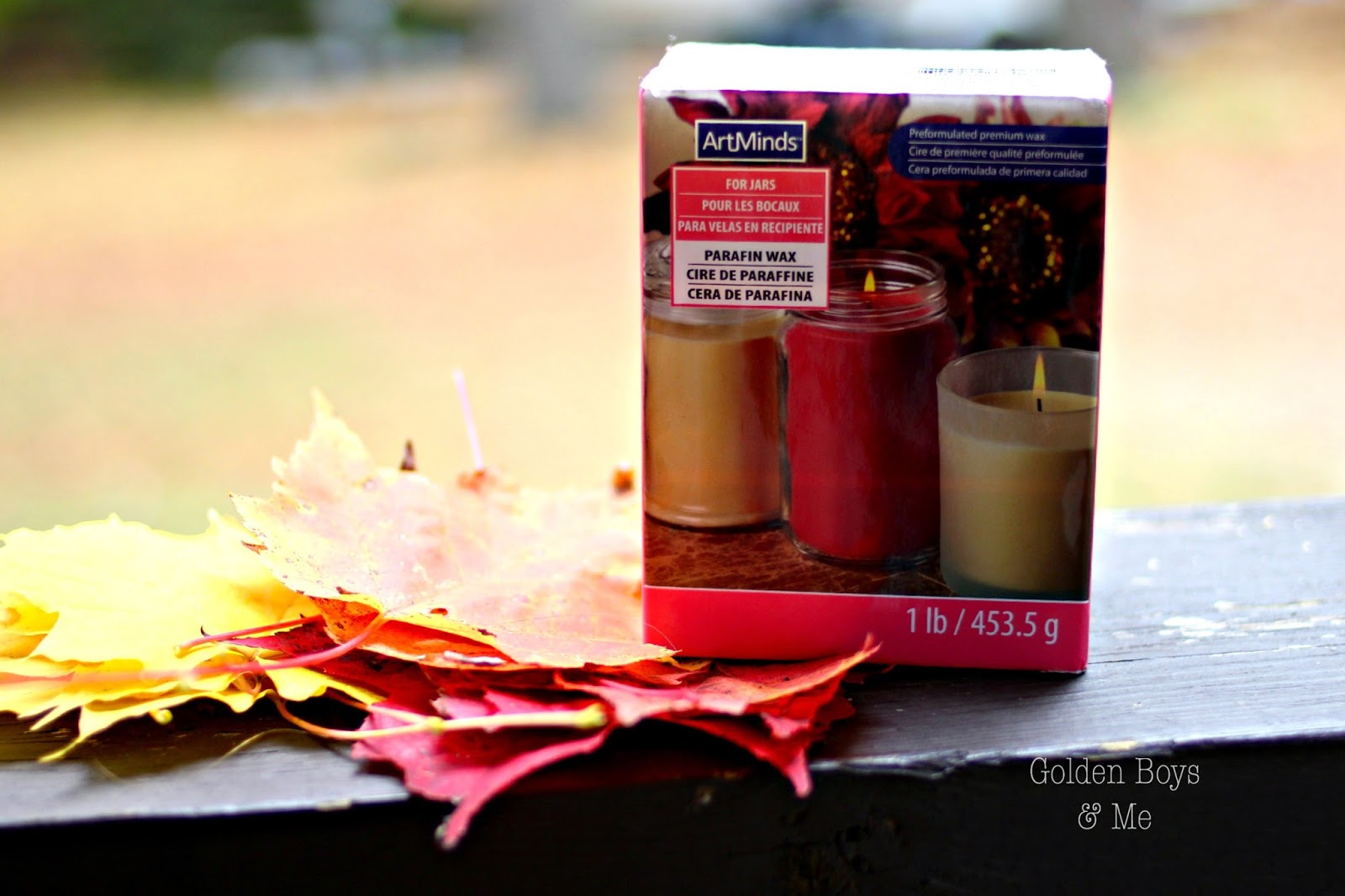 Parafin wax to preserve fall leaves-www.goldenboysandme.com