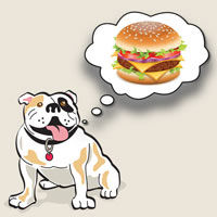 South Bayview Bulldog dreams of the best Leaside burger