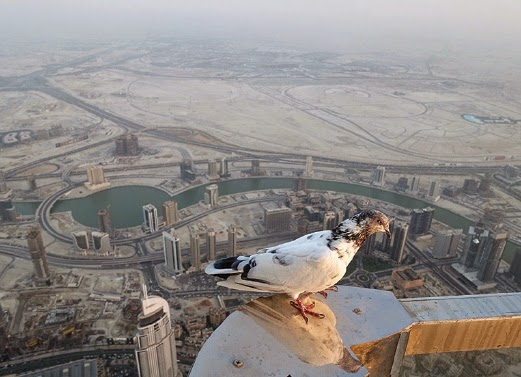 Puncak Burj Khalifa Dubai