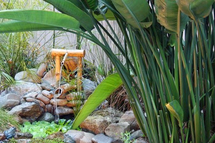 Backyard Bamboo Garden Ideas : Bamboo In The Garden  A Fascinating And Versatile Plant  Houzz Home