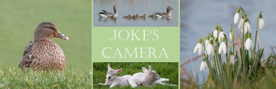 Joke's Camera