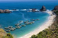 Transportasi Dan Souvenir Khas Pantai Tanjung Papuma