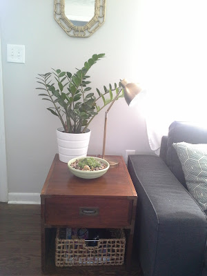 Side end table, plants, gold brass lampcampaign furniture organizing baskets