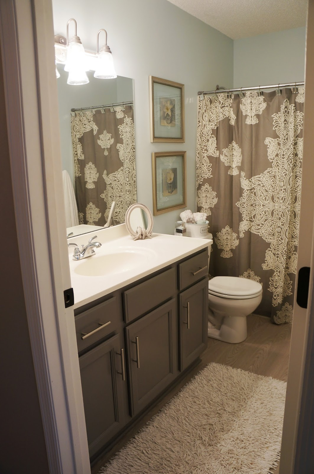 it 39 s a pretty prins life bathroom redo the before middle after and the always changing