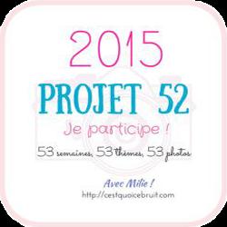 Projet 52 2015