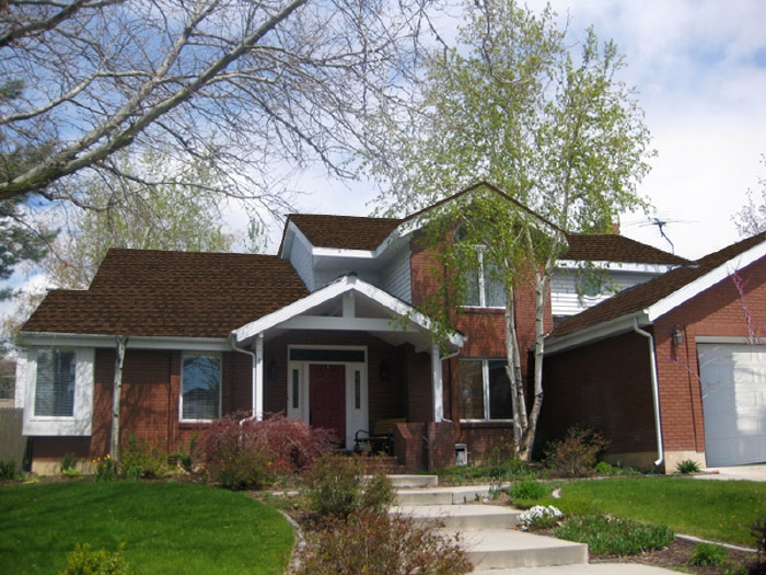 The Thrifty Home Roof Color Poll