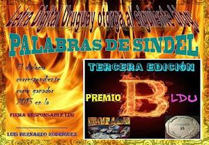PREMIO B LDU TERCERA EDICION