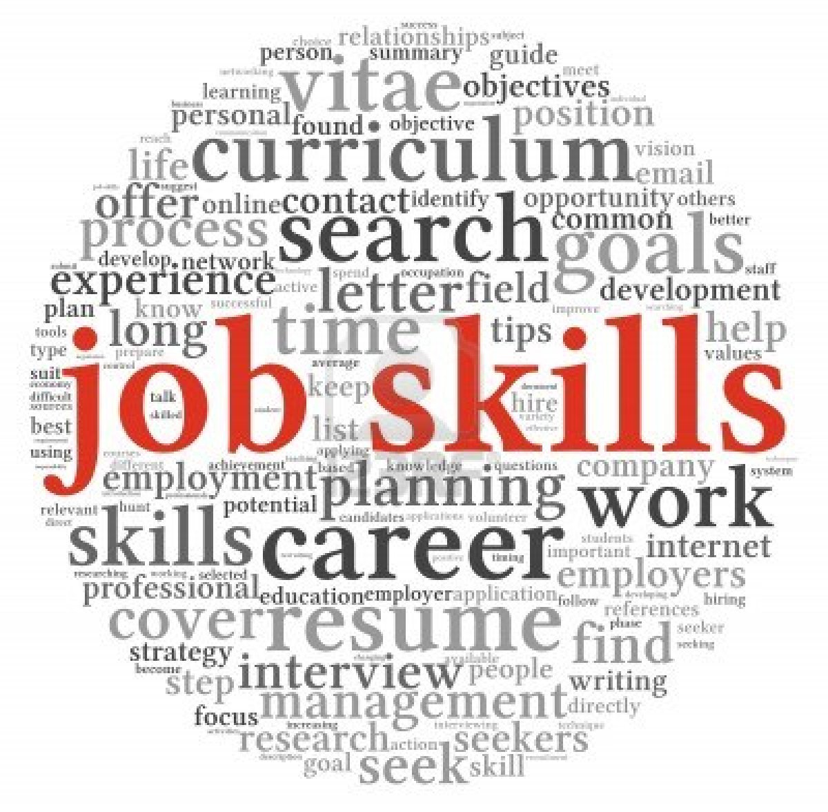important skills qualities that employees look for in employment