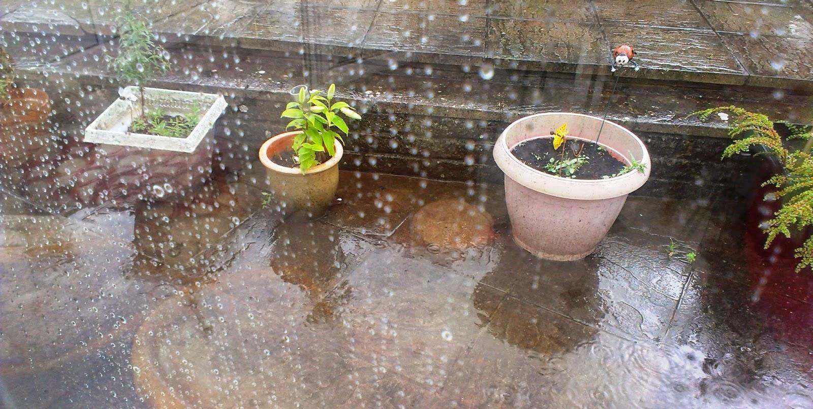 12pm - Rain
