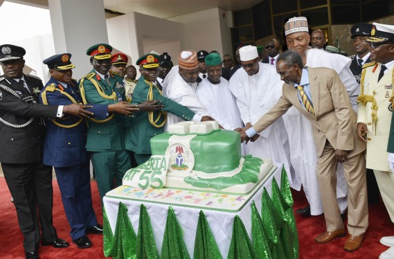 Nigerian Independence Anniversary Cake In National Flag