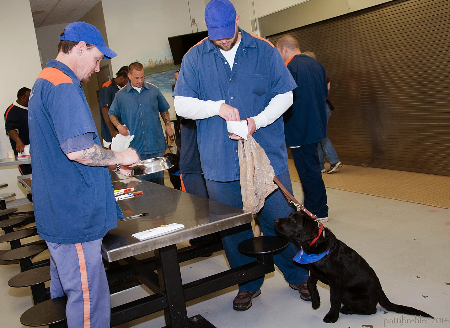 Two men dressed in the prison blue uniform with blue baseball caps are standing on either side of the end of a steel lunch table. The man on the left is looking down at a stainless steel dog dish whcih he is holding in his hands. The man onthe right is holding a white envelope, reaching into it with his right hand and holding a plastic shopping bag and leash in his left hand. A black lab puppy is sitting on the tile floor next to the man and looking up at the bag. There are other men and puppies in the background.