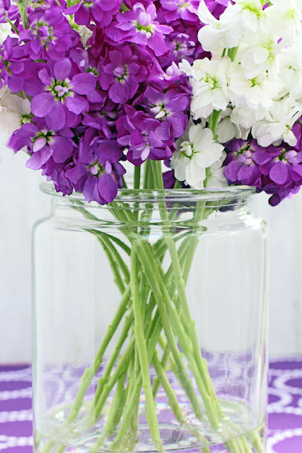 Purple and white stock flowers in clear glass jar