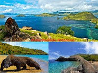 Komodo Island Indonesia; See the Rare Komodo Dragon