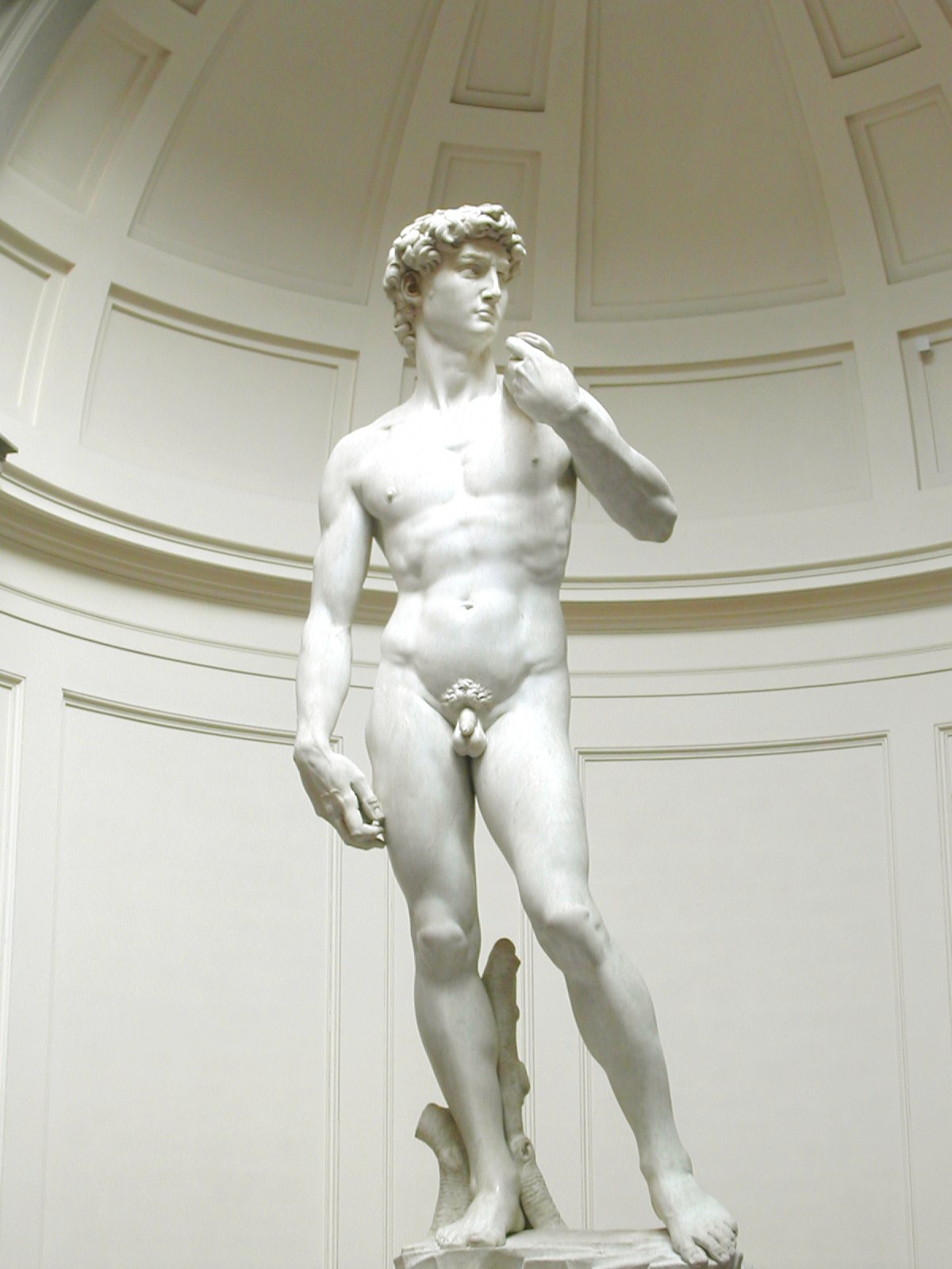 the representation of king david in the artworks of donatello verrocchio and michelangelo