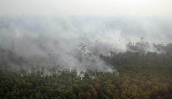 Simak, pesan BMKG indonesia, udara menipis disebabkan asap