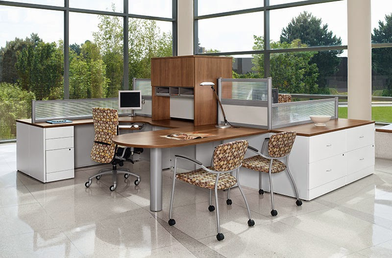 Professional Office Interior
