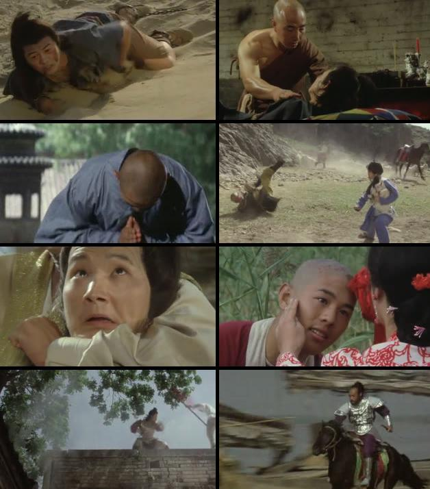 The Shaolin Temple 1982 Dual Audio Hindi 480p BluRay 300mb