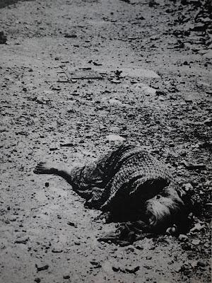 住民を巻き込んだ 沖縄戦66年目の慰霊の日