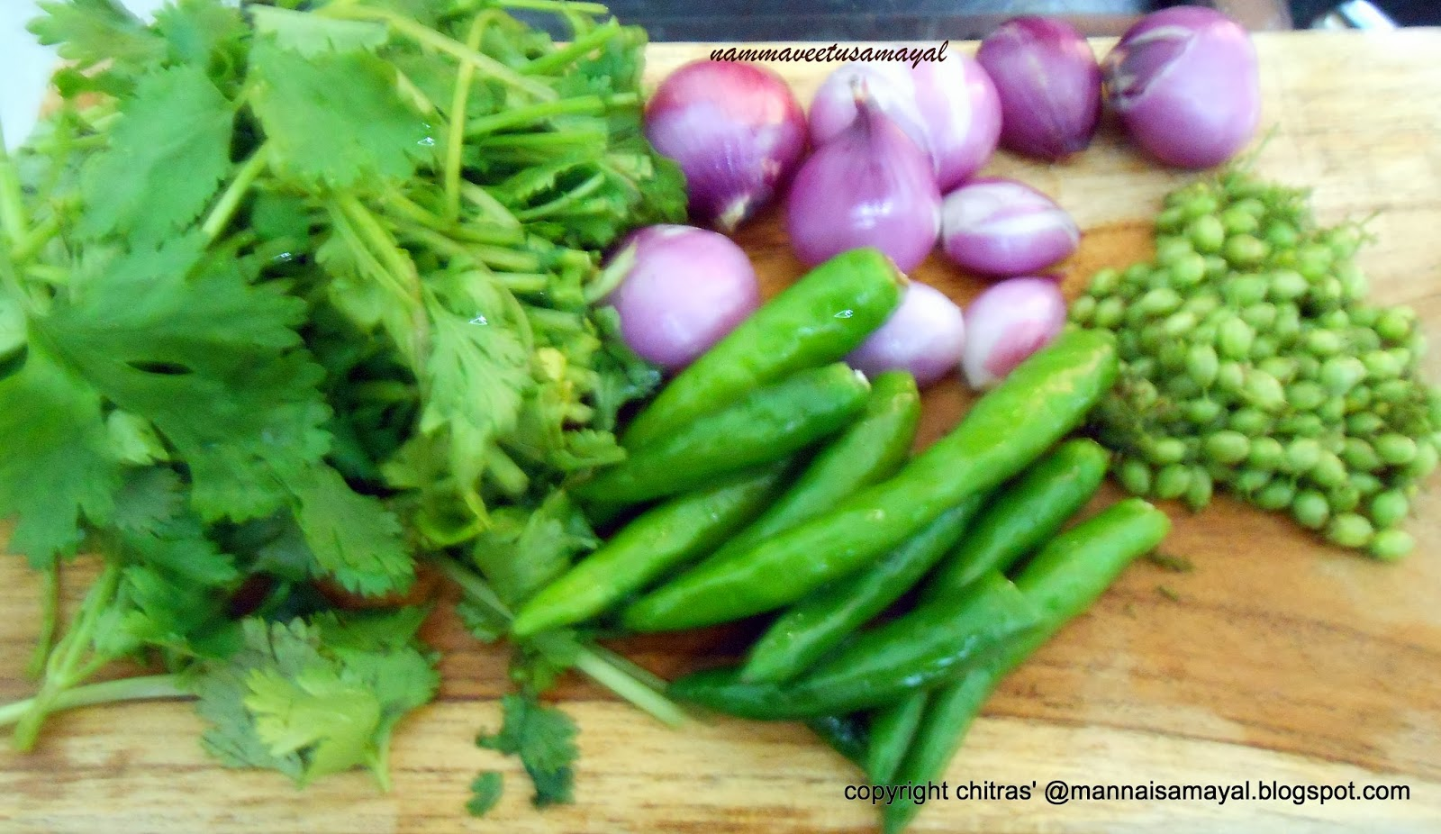 Green Coriander seeds Chutney
