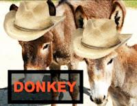 terminologia poker donkey