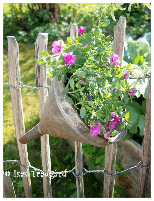 Loppissil fylld med blommor