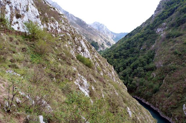 Embalse de La Jocica - Río Dobra - Asturias