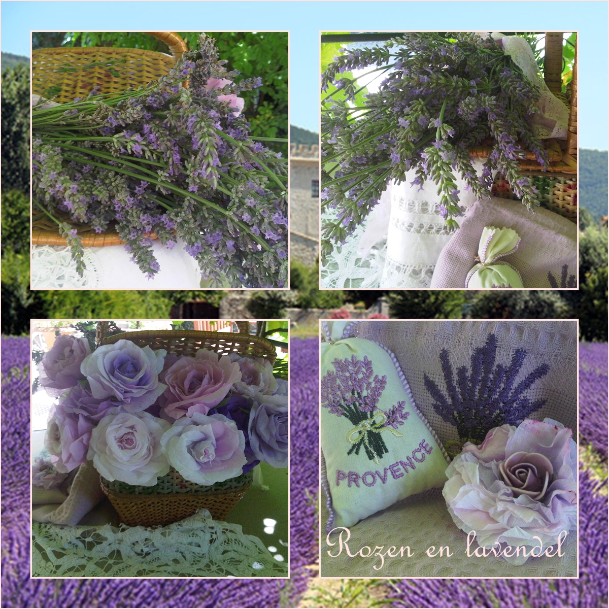 vintage paper roses: French lavender from the Provence and ...