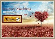 Lectura de Registros Akashicos