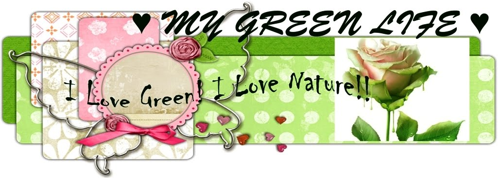 ♥ ♥ MY GREEN LIFE ♥ ♥