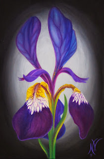 https://www.etsy.com/listing/168877492/still-life-iris-flower-blossom-bloom?ref=shop_home_active