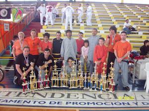 Torneo Paysandu 2010