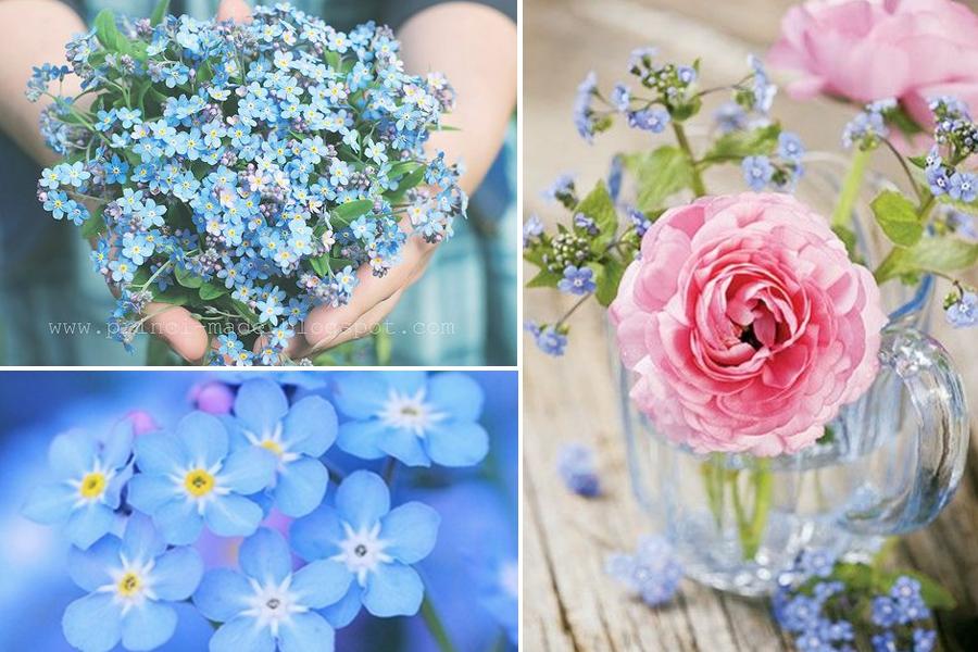 häät siniset kukat hääkimppu häiden suunnittelu lemmikki