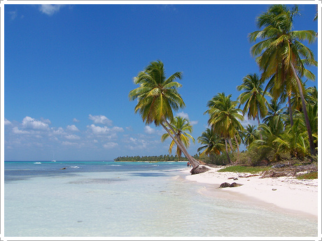 travel guide dominican republic pdf