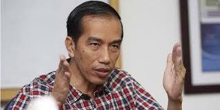 Profil Biodata Jokowi