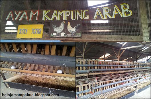 """Jendela Alam"" - Wisata Seru di Bandung"