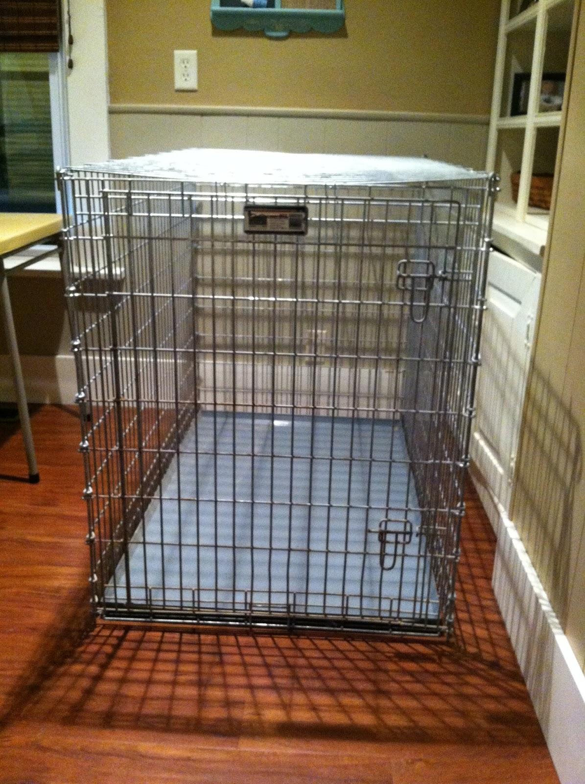 Homemade Pet Squirrel Cage