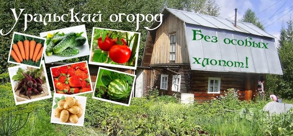 Уральский огород - без особых хлопот!