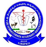 Jobs of Assistant Professor in Sri Venkateswara Veterinary University