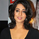 Mahi Gill at the Music launch of Not a love Story