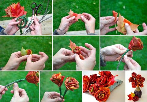 DIY Roses of autumn leaves
