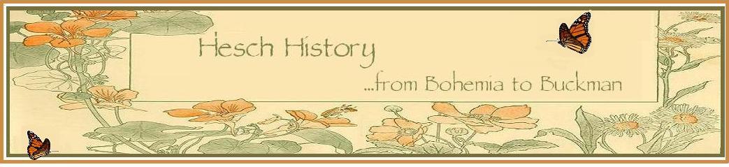 HESCH HISTORY
